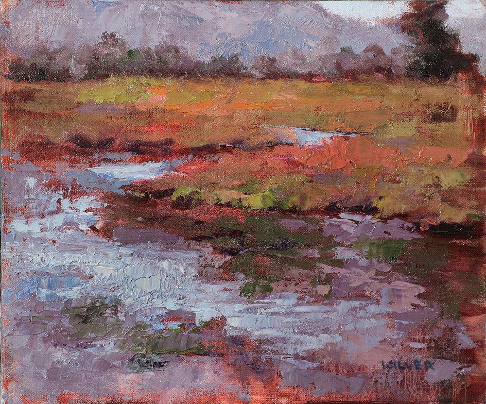 Fall at the Marshlands