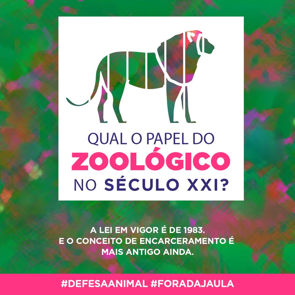 enviar_zoo.png