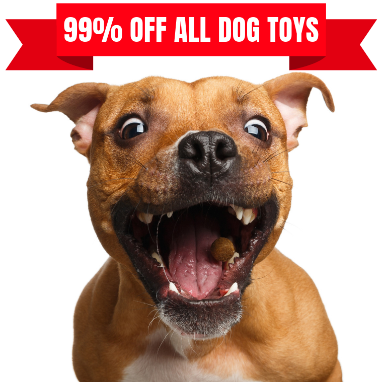 share a diggity dog deal -