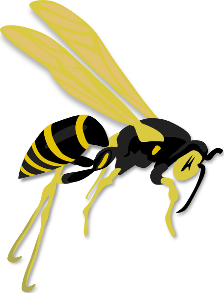 wasp-sting-clipart-1.png