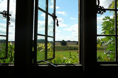 open-window.jpg