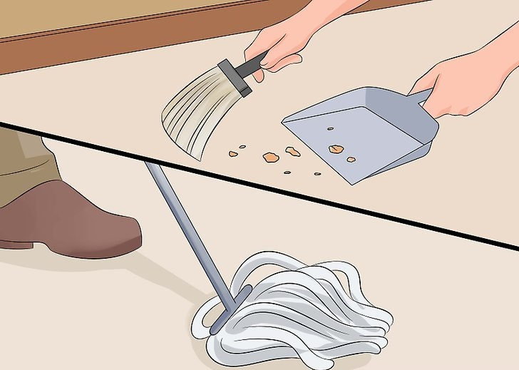 Clean up spills and crumbs immediately.