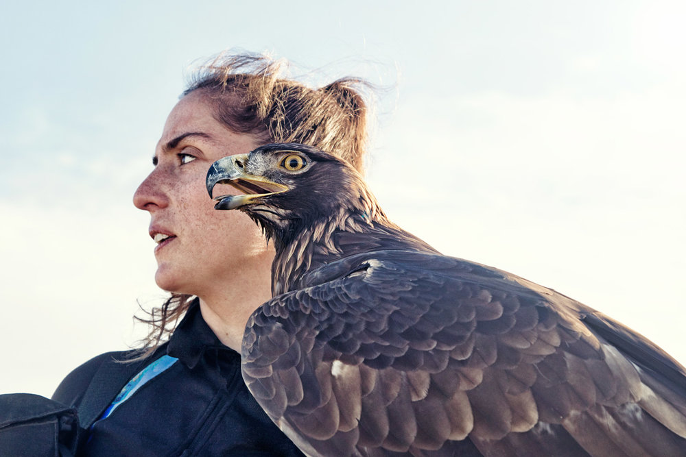 commercial_photographer_falconer1.jpg