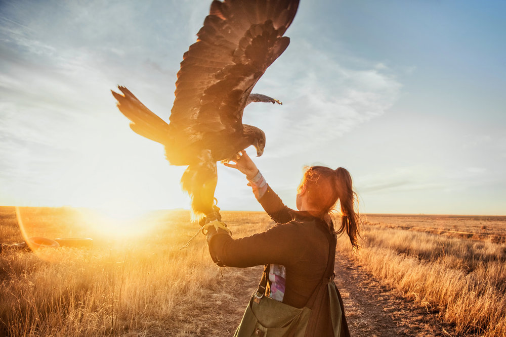 commercial_photographer_falconer7.jpg