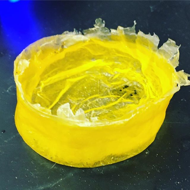 Proof of concept biodegradable plastic film, holding water