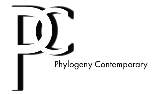 Exhibitions — Phylogeny Contemporary