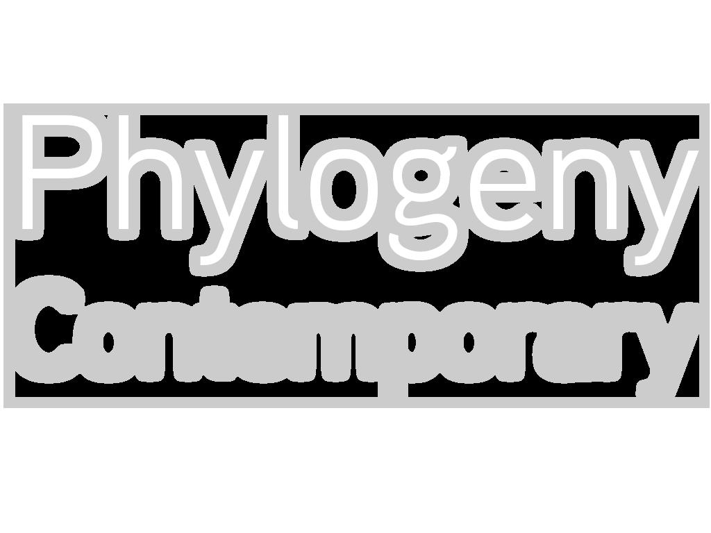 Merlino Bottega D Arte deirdre sullivan beeman — phylogeny contemporary