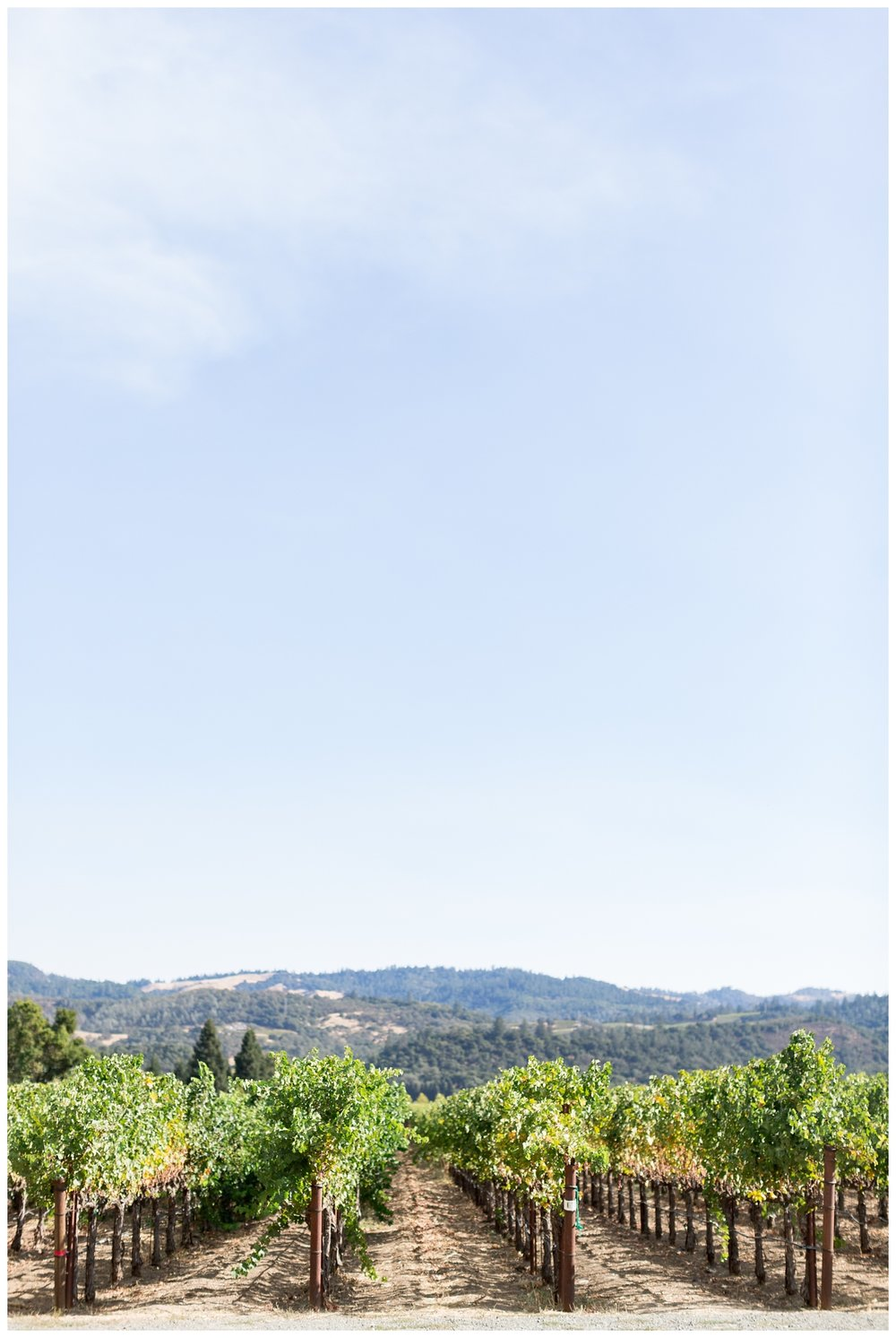 Villa AIX Healdsburg California wedding videographer