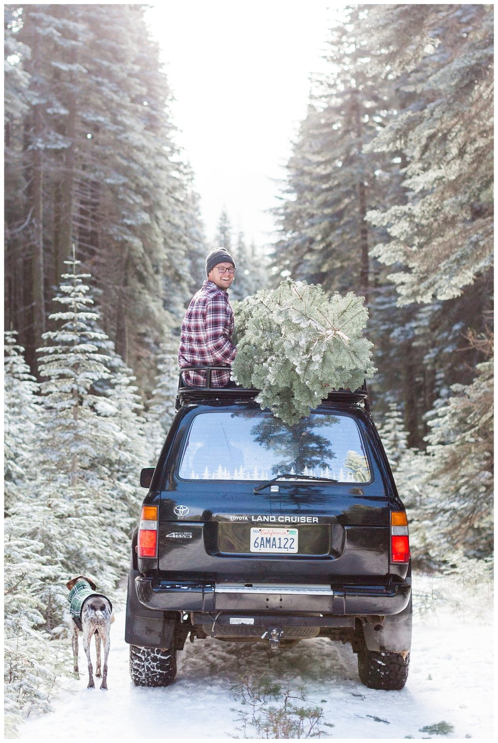 driving away with a full load of Christmas Trees in Butte Meadows taken by a portrait photographer from Chico