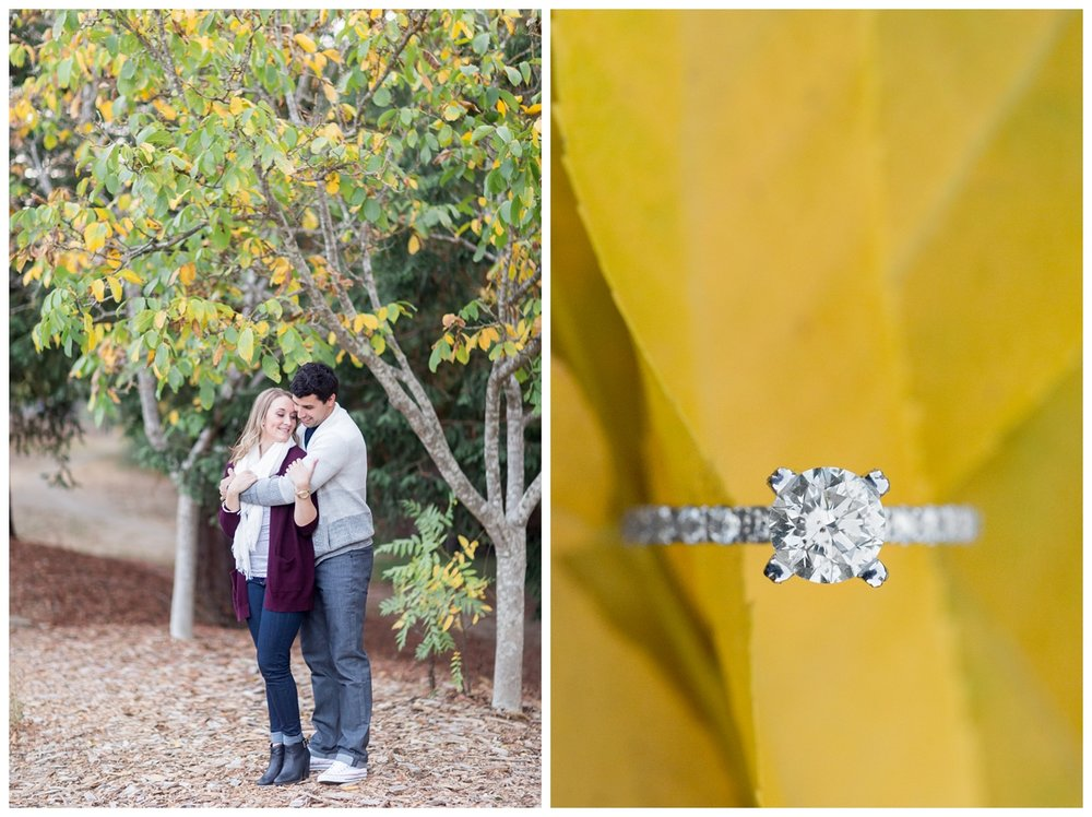 Fall engagement photo session near San Francisco