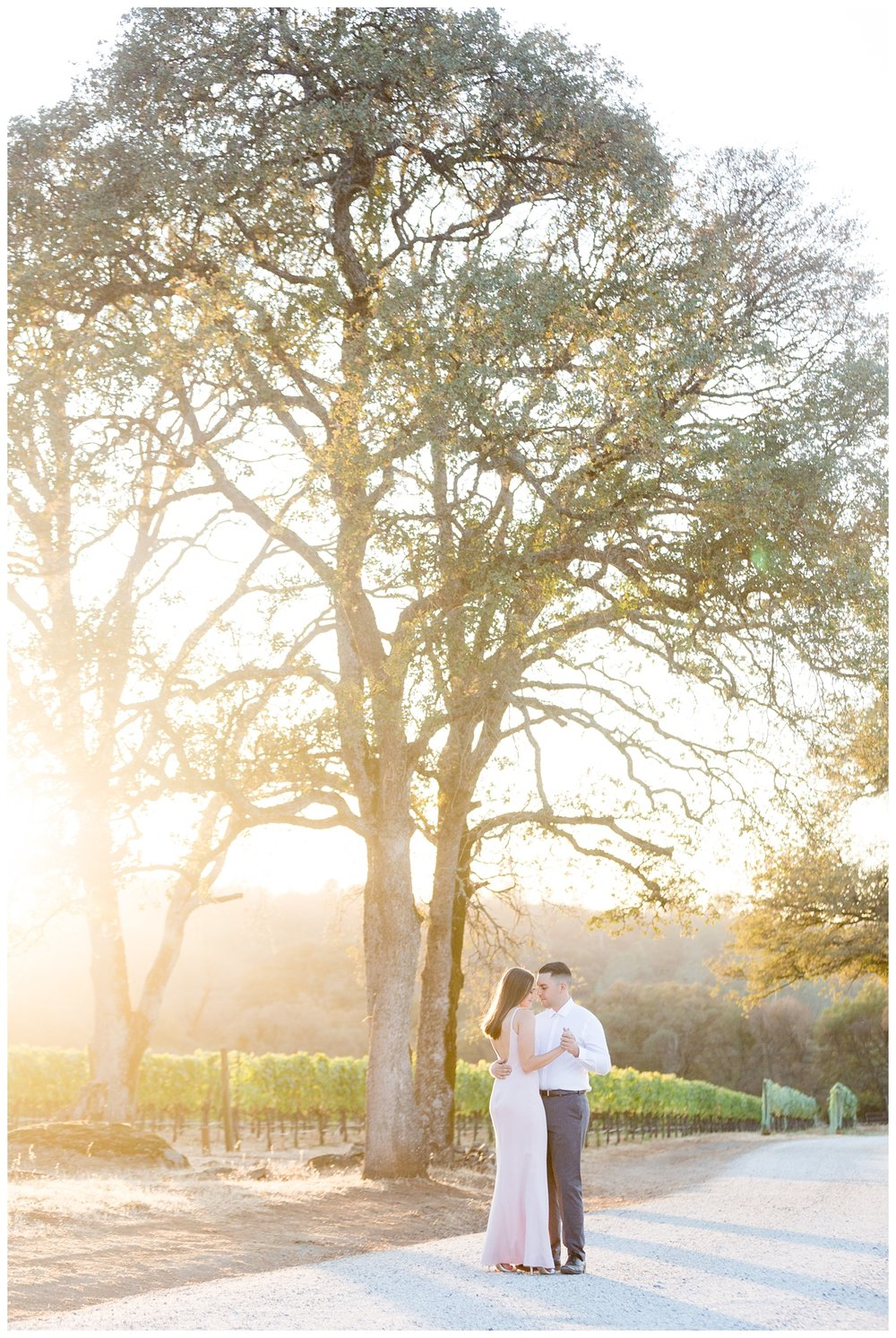 Auburn-Winery-Engagement-Photography_6533.jpg