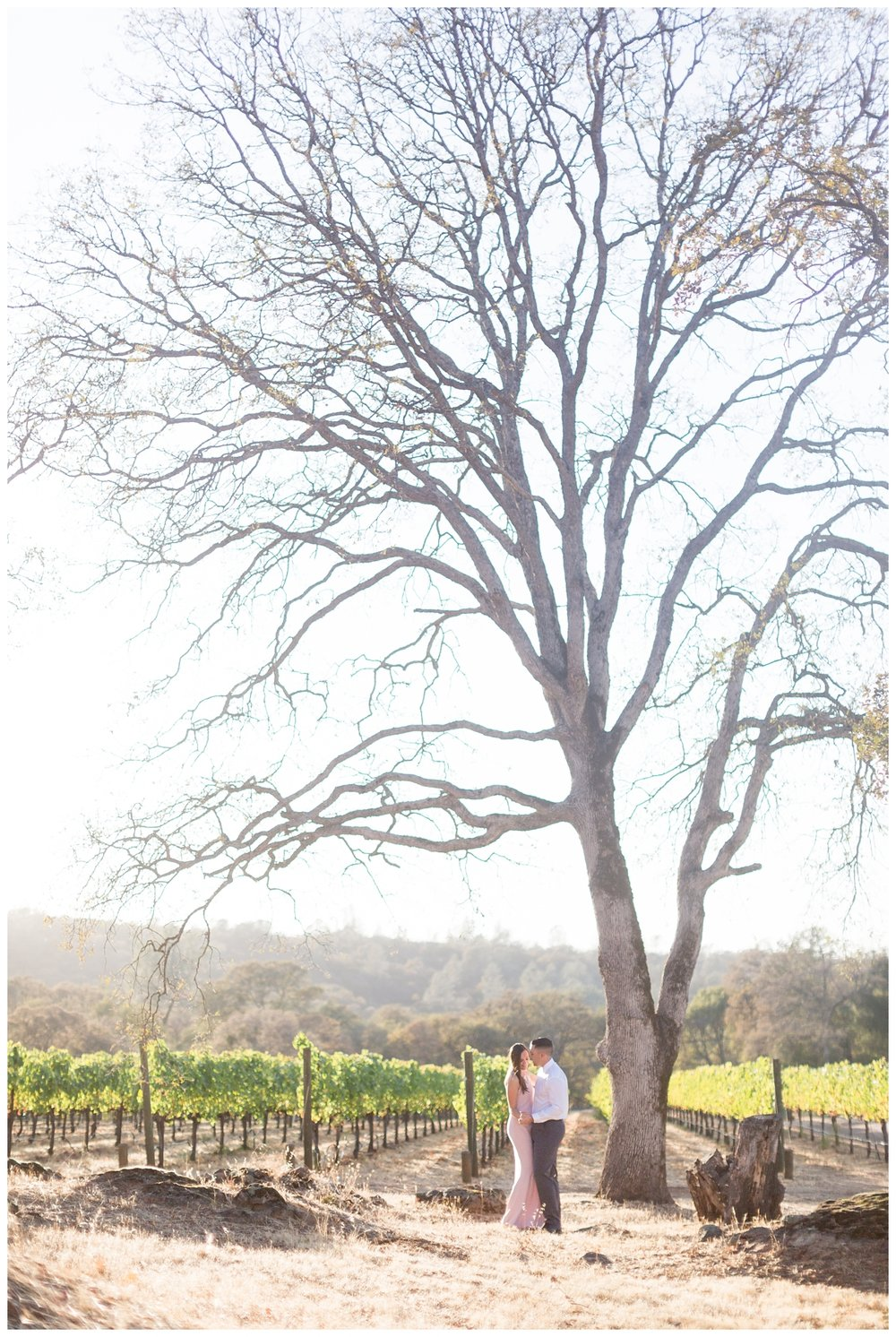 Auburn-Winery-Engagement-Photography_6510.jpg