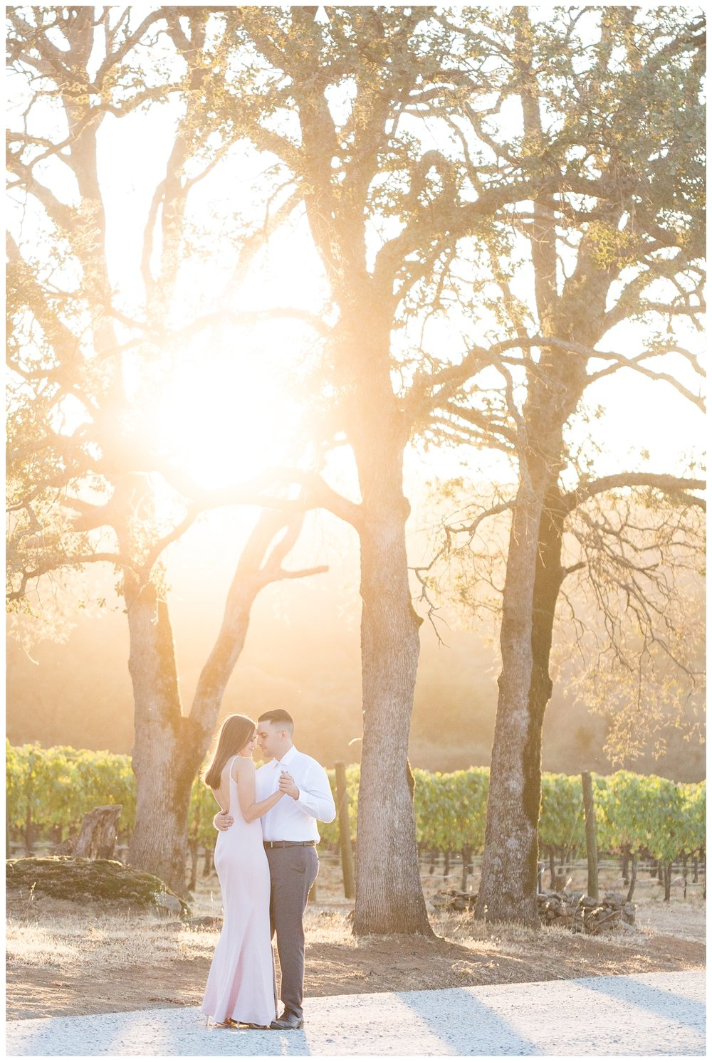 Auburn-Winery-Engagement-Photography_6534.jpg