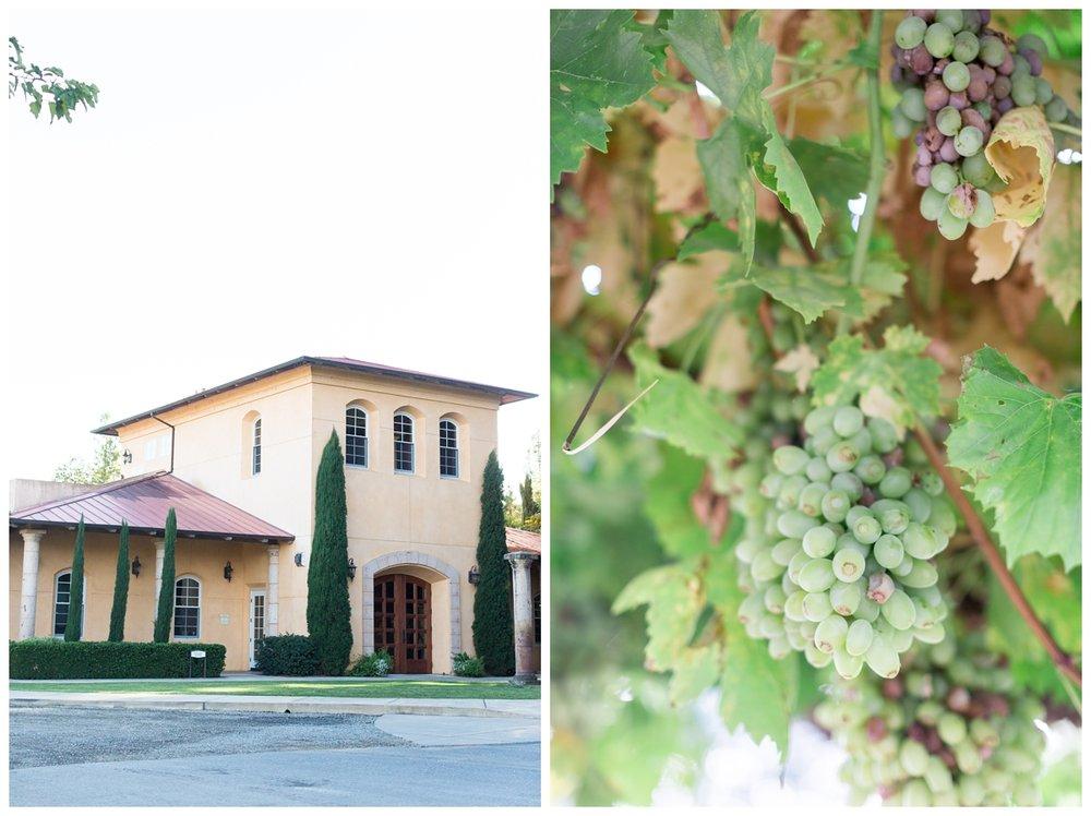 trentadue-winery-wedding-photographer-52.jpg