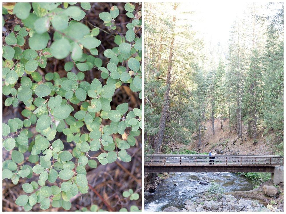 Butte-Meadows-Mountain-Engagement-Photographer_6066.jpg