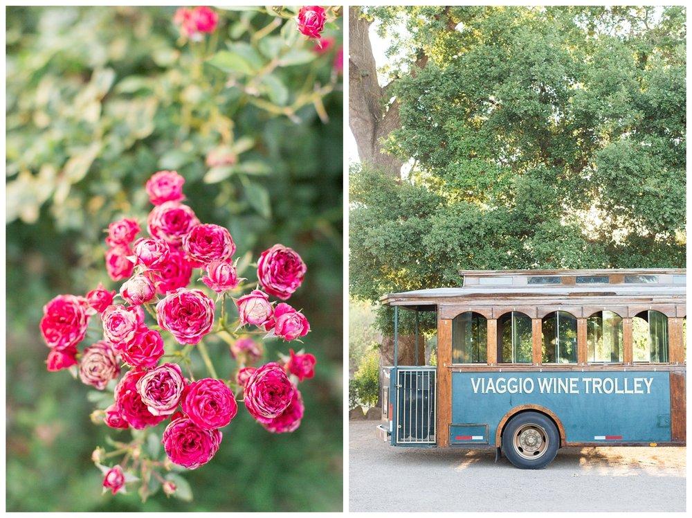 Viaggio-Winery-Wedding-Photographer_5474.jpg