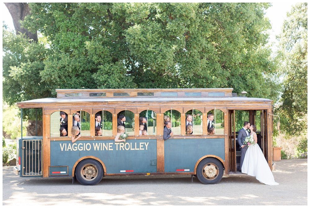Viaggio-Winery-Wedding-Photographer_5412.jpg