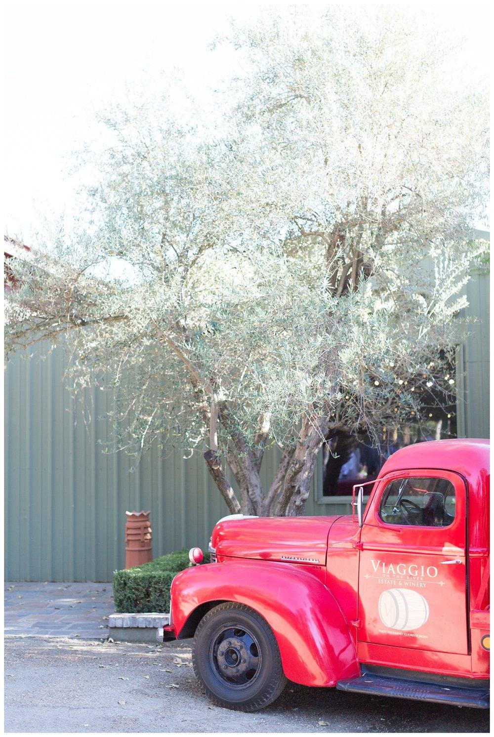 Viaggio-Winery-Wedding-Photographer_5458.jpg