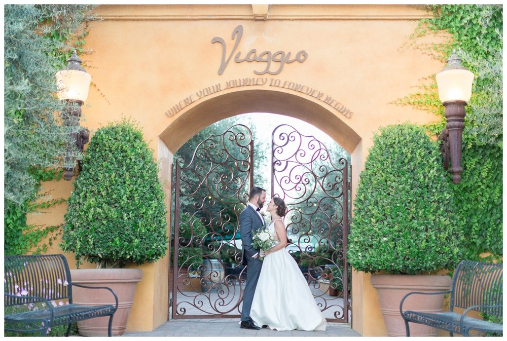 Viaggio-Winery-Wedding-Photographer_5483.jpg