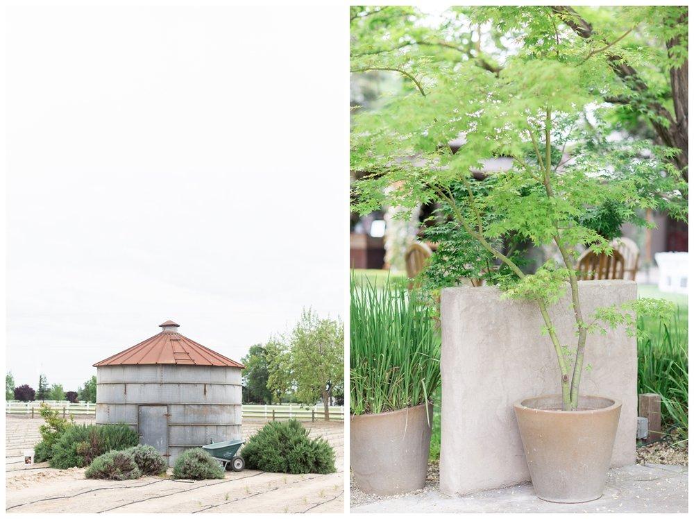 Pageo-Lavender-Farms-Wedding-Photos_4681.jpg