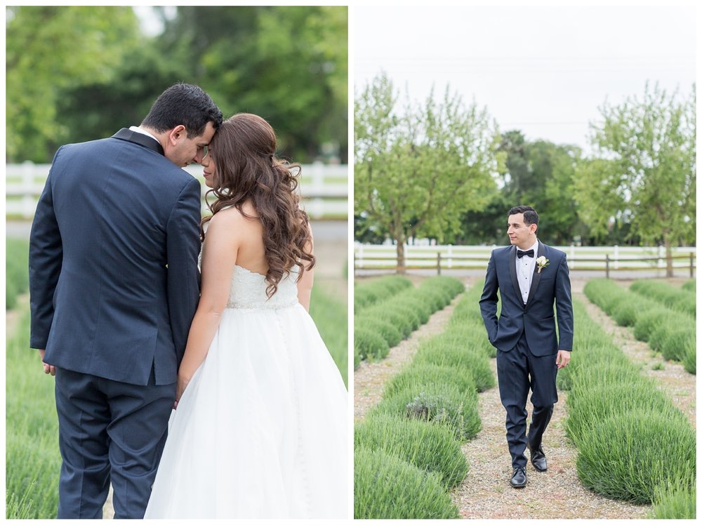 Pageo-Lavender-Farms-Wedding-Photos_4698.jpg