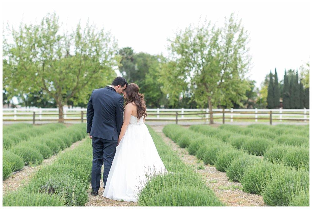 Pageo-Lavender-Farms-Wedding-Photos_4695.jpg