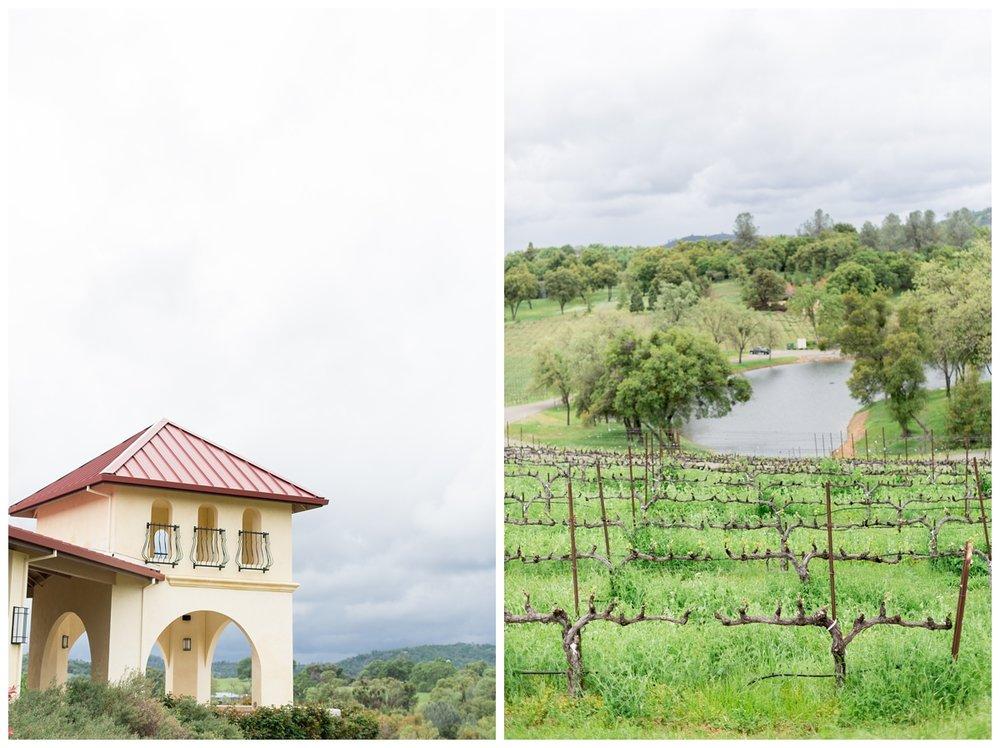 David-Girard-Vineyards-Wedding-Photos_4498.jpg