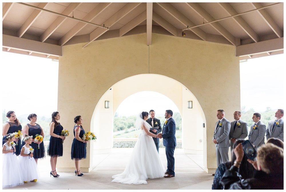 David-Girard-Vineyards-Wedding-Photos_4533.jpg