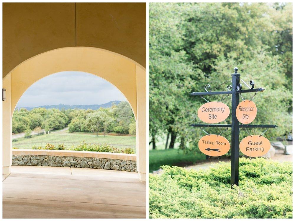 David-Girard-Vineyards-Wedding-Photos_4499.jpg
