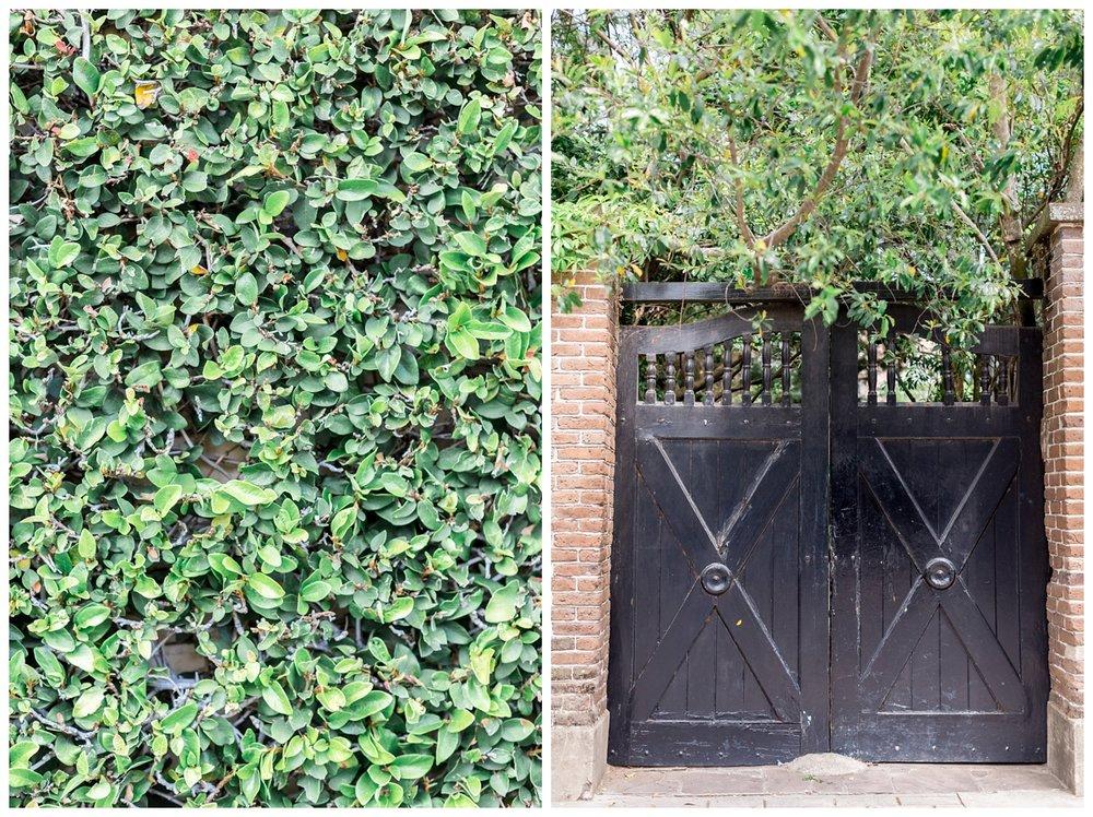 Historic-Downtown-Charleston-Destination-Photographer_0407.jpg