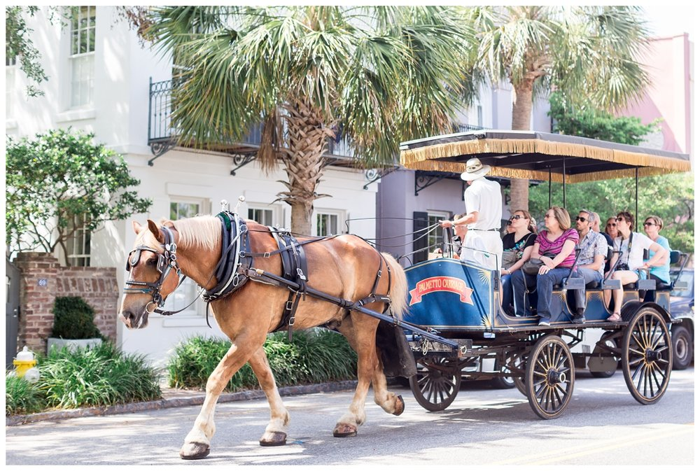 Historic-Downtown-Charleston-Destination-Photographer_0404.jpg