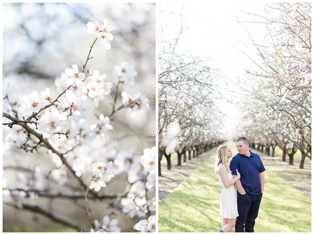 Almond-Blossom-Engagement-Photography-Chico_4132.jpg