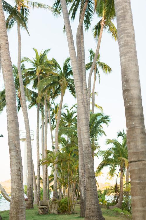 Isla-de-Navidad-Resort-Destination-Wedding-Photographer-TréCreative256of298.jpg