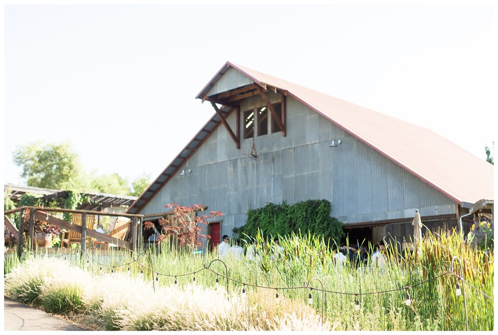 Taber-Ranch-Wedding-Capay-California-Photographer_1503.jpg