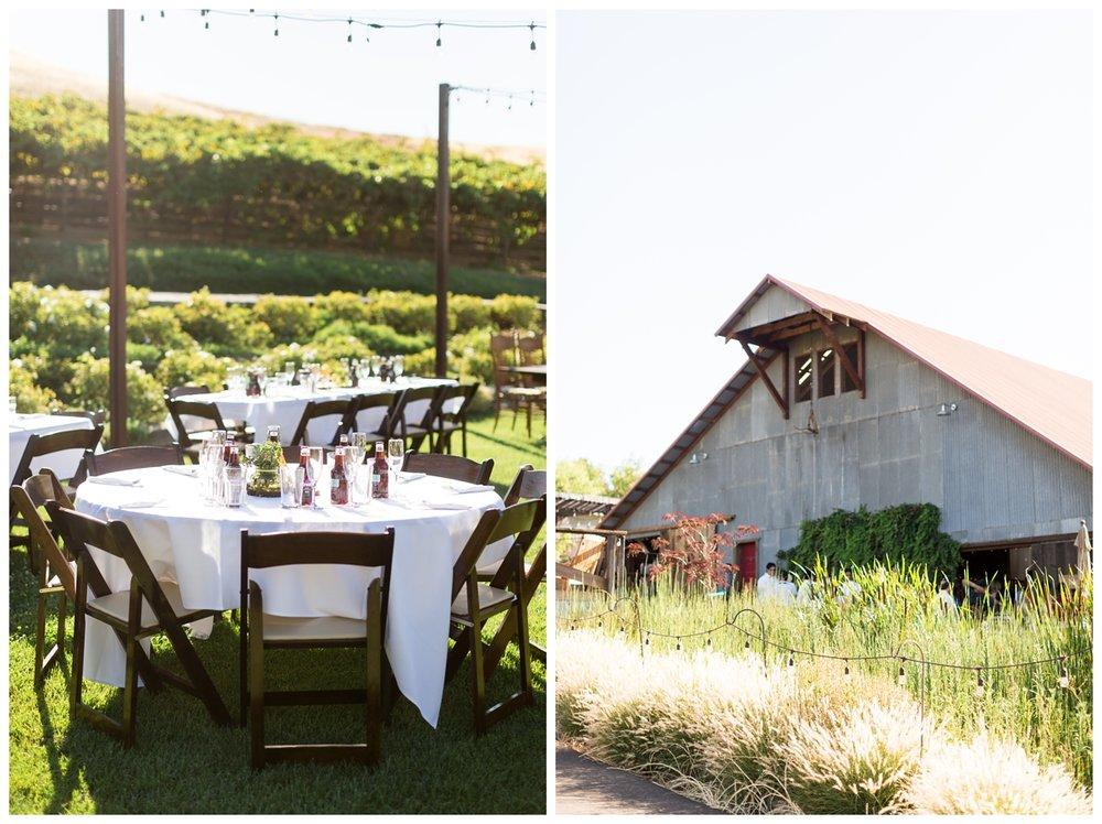Taber-Ranch-Wedding-Capay-California-Photographer_1526.jpg