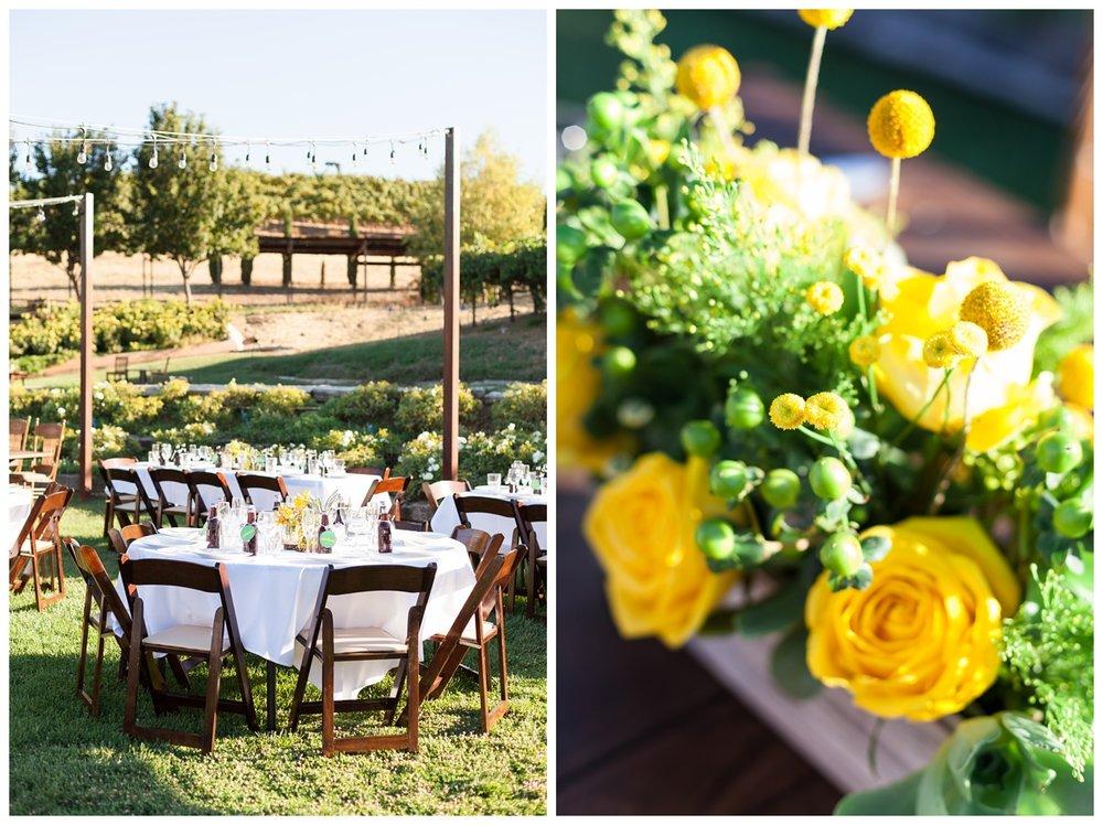 Taber-Ranch-Wedding-Capay-California-Photographer_1524.jpg