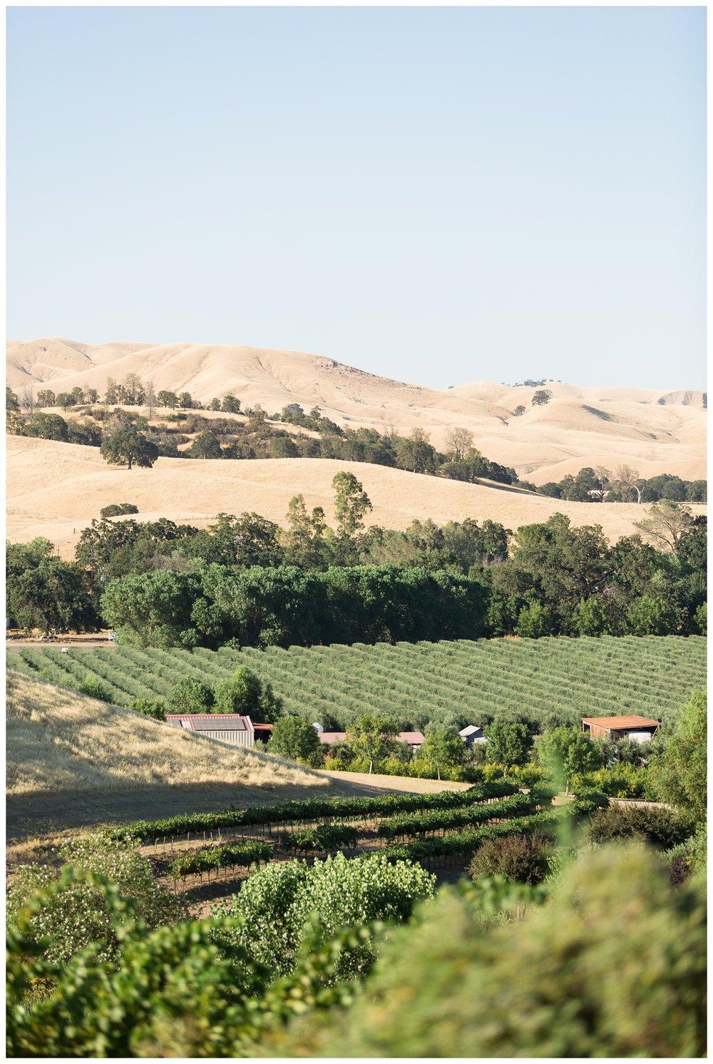 Taber-Ranch-Wedding-Capay-California-Photographer_1516.jpg