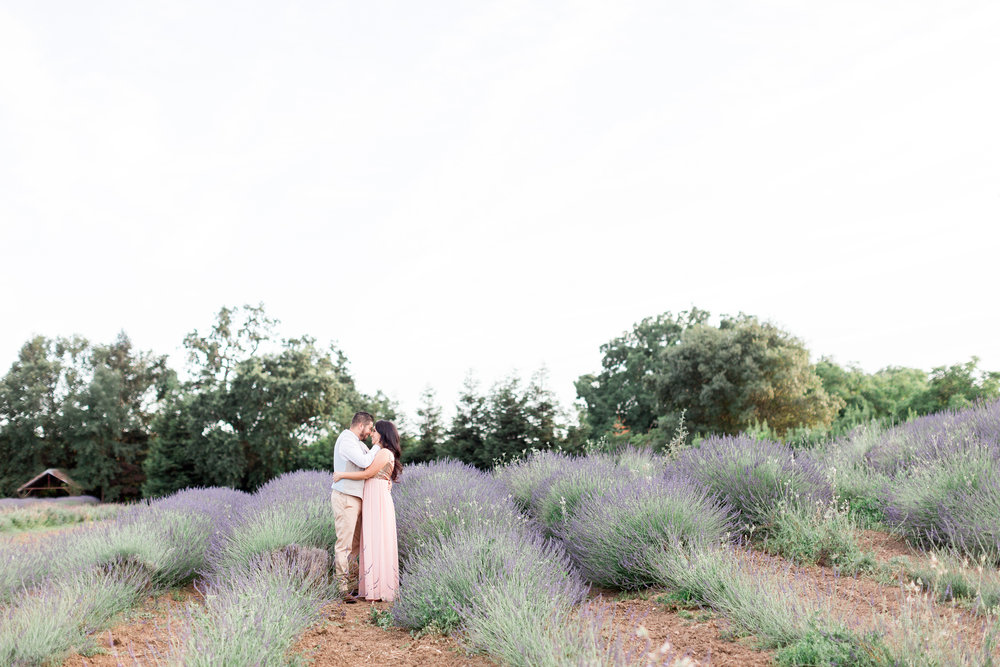 Bayliss-Ranch-Lavender-Farm-California-Photos (45 of 131).jpg