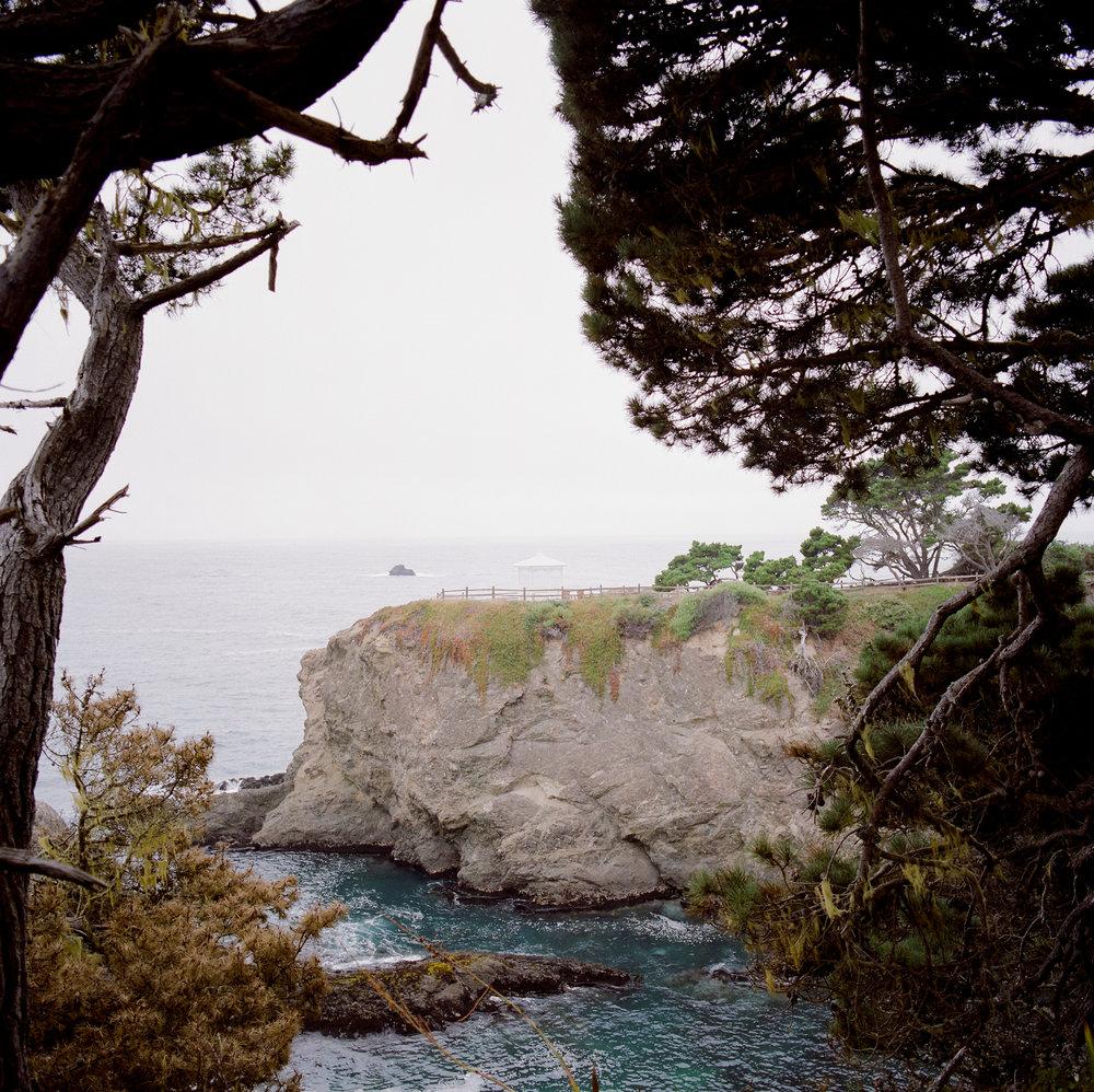 mendocino-lifestyle-photographer-6.jpg