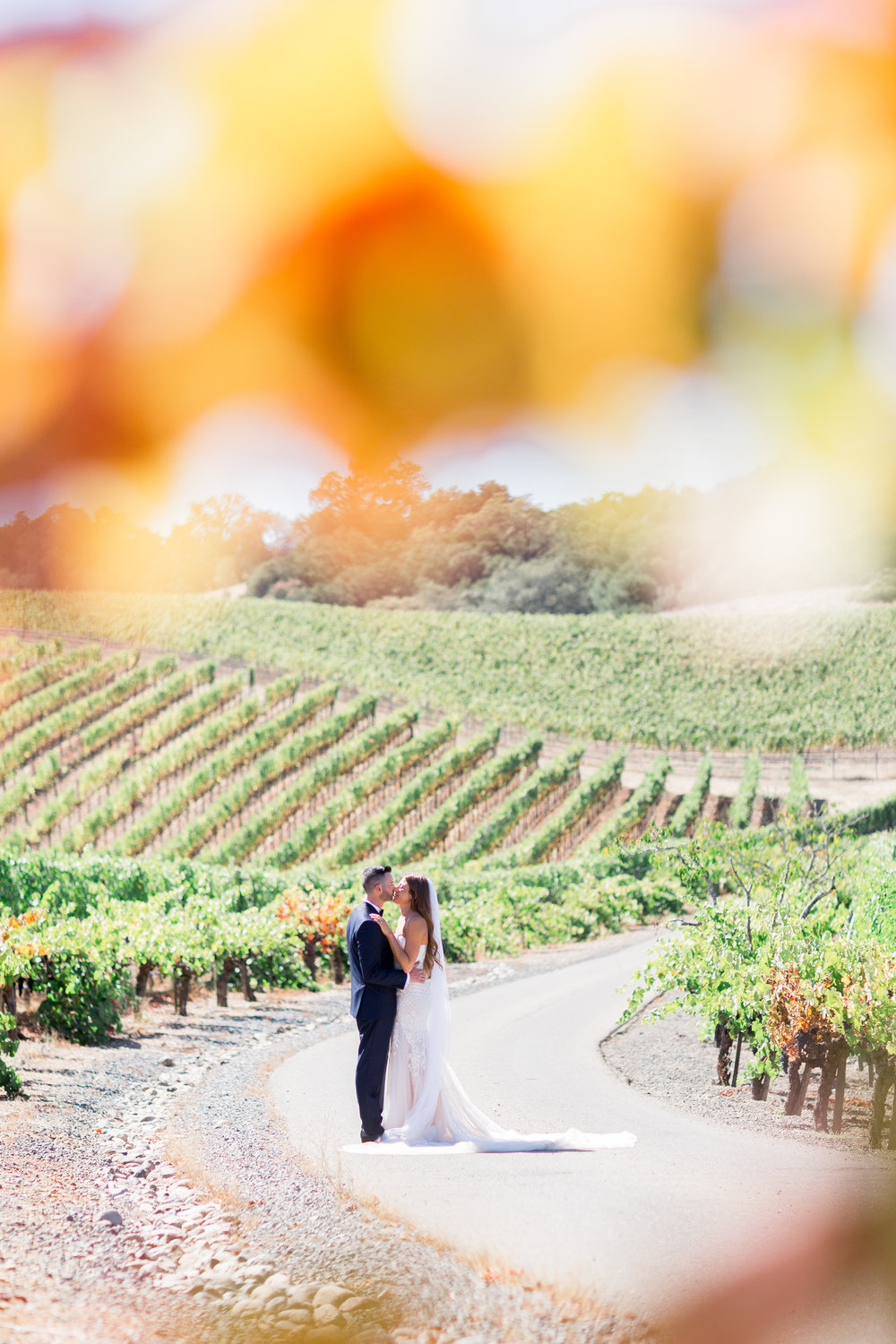 Calegari-Vineyards-Healdsburg-Wedding-Photographer (72 of 262).jpg