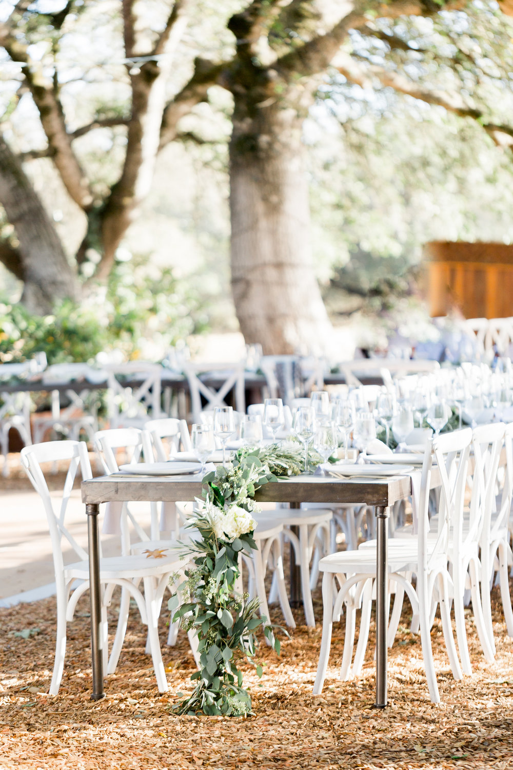 outdoor-reception-underneath-oak-trees-with-white-wood-trees.jpg