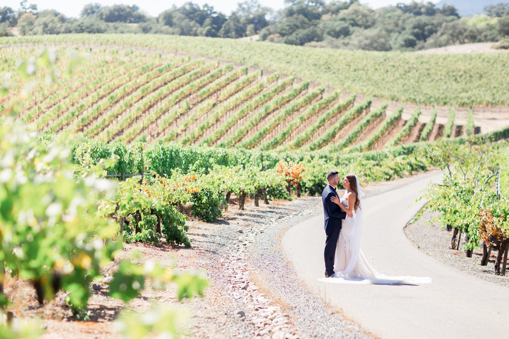 bride-groom-sunset-photos-in-vineyards-Healdsburg-destination-photographer.jpg