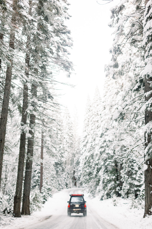129Butte-Meadows-Christmas-Tree-Adventure (2 of).jpg