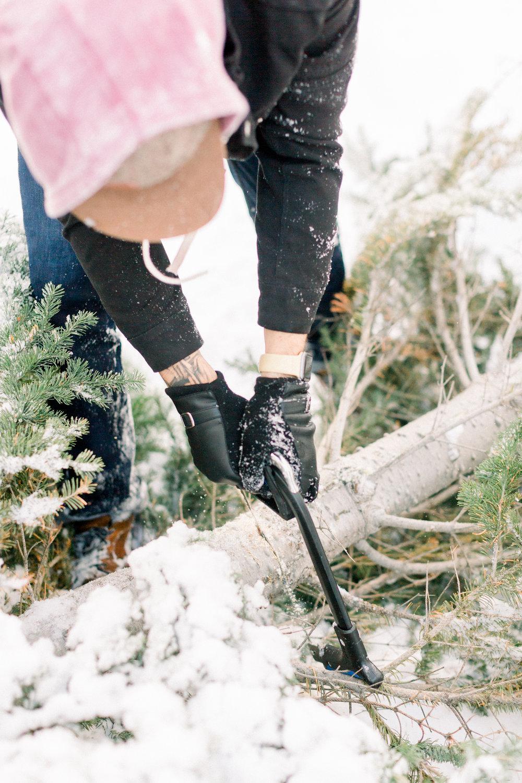 129Butte-Meadows-Christmas-Tree-Adventure (29 of).jpg
