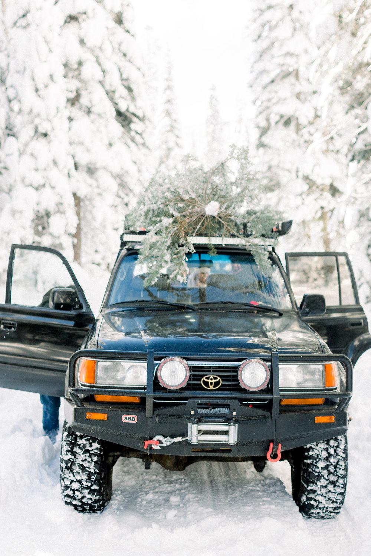 129Butte-Meadows-Christmas-Tree-Adventure (60 of).jpg