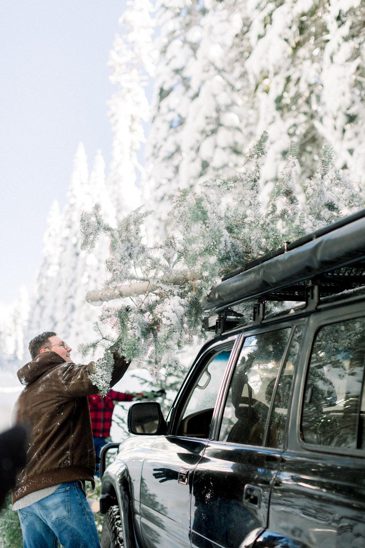 129Butte-Meadows-Christmas-Tree-Adventure (46 of).jpg