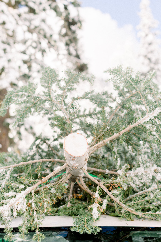 129Butte-Meadows-Christmas-Tree-Adventure (115 of).jpg