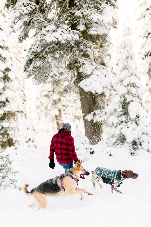 129Butte-Meadows-Christmas-Tree-Adventure (3 of).jpg