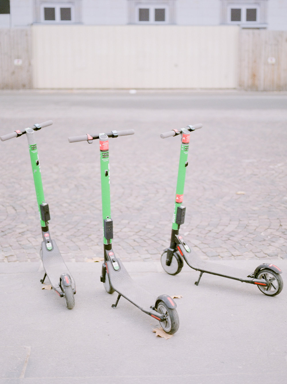 bird-scooters-paris-france.jpg