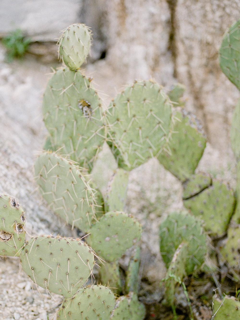 arizona-travel-photographer.jpg